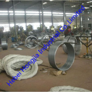Hot Sell Galvanized Razor Wire Cbt-65