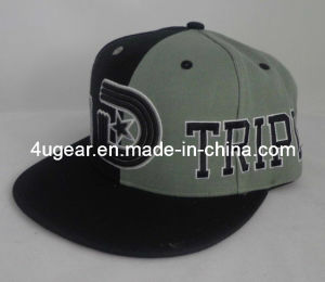 Fashion 100% Polyester 6-Panel Snapback Hat with Big Special Embroidery (F-040)