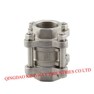 Stainless Steel Spring Vertical Check Valve Threaded