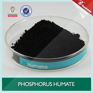 X-Humate H95 Series Phosphorus Humate 95%Min Shiny Flakes/Powder pictures & photos