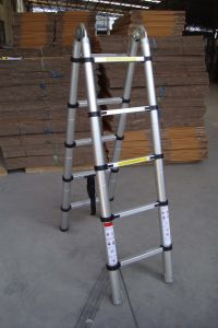Double Telescopic Ladder (2.6M) pictures & photos
