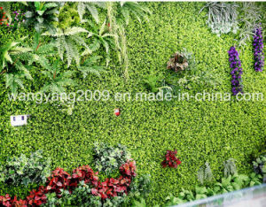 Artificial Synthetic Fake Green Plant Wall for Decoration pictures & photos