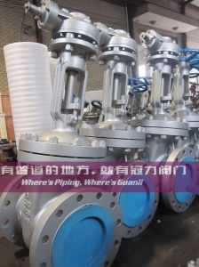 Cast Steel API 600 Gate Valve Class 300lbs pictures & photos