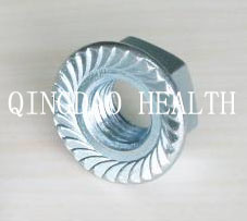DIN 6923 / ISO 4161 Hexagon Flange Nut pictures & photos
