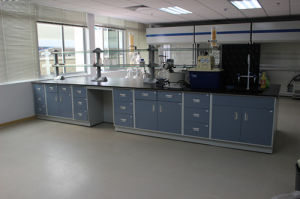 Used Chemical Laboratory Bench Laboratory Equipment pictures & photos