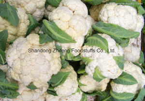 2017 New Crop Cauliflower with Good Price pictures & photos