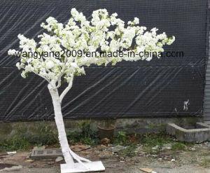 Factory Hot Sale Artificial Fake Handmade Sakura Cherry Blossom Tree for Decoration pictures & photos