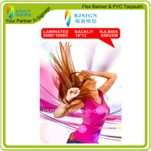 High Quality Laminated Backlit Flex Banner (RJLB005) pictures & photos