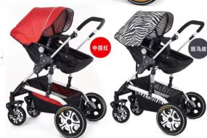 Delux Baby Strollers/Baby Carriers Sr-BS6 pictures & photos