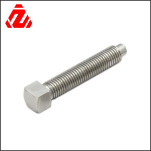 316 Stainless Steel Square Bolt pictures & photos