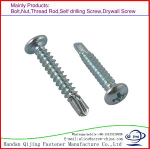 Self-Drilling Screw pictures & photos
