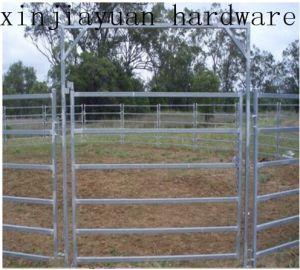 Galvanized Cattle Farm Fence Hot Sale pictures & photos