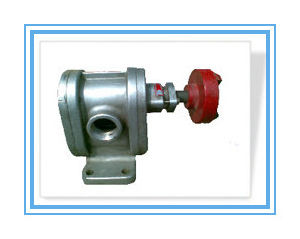 2cy Stainless Steel High Pressure Gear Oil Pump pictures & photos
