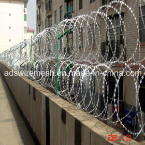 Galvanized Razor Barbed Wire Mesh Fence (BTO-30, CBT-65) pictures & photos