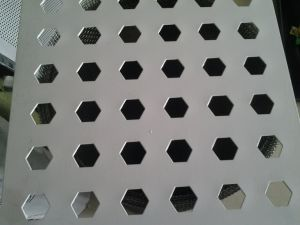 Sale Stainless Steel Perforated Metal Sheet pictures & photos