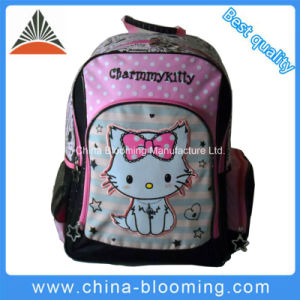 Two Compartments Student Backpck Daypack School Bag pictures & photos