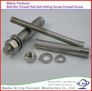 China High Quality Sleeve Anchors Hex Nut Expansion Bolt pictures & photos