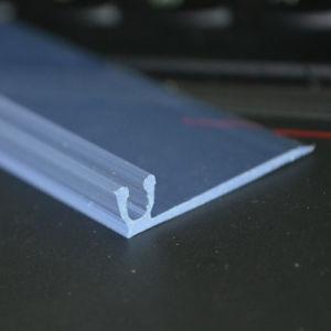 Plastic Track Extrusion Profile Ds-1014 pictures & photos