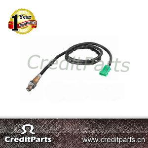 Bosch Oxygen Sensor 0258006027/0 258 006 027 Fit for Renault, Peugeot, Citroen pictures & photos