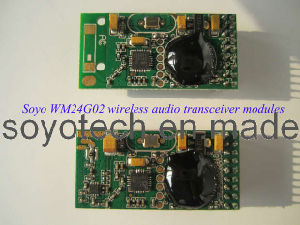 2.4GHz Digital Wireless Audio Transmitter Receiver Module pictures & photos
