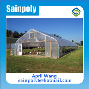 Wholesale Plastic-Film Tunnel Greenhouse for Sale pictures & photos