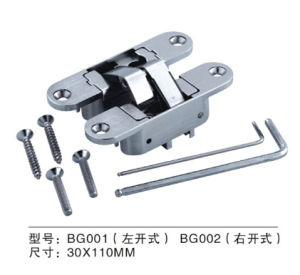 High Quality Adjustable Zinc Alloy Conceal Hinge (BG001 left hand) pictures & photos