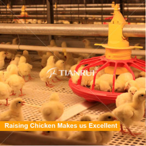 High quality Poultry Farming Pan Feeding System for Chicken Farm pictures & photos