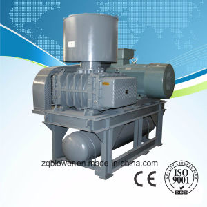 Roots Air Blower USA Technology Heavy-Duty Air Cooling (ZG-300) pictures & photos