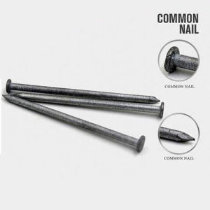 Factory Supply 6D Common Nail with Good Quality pictures & photos