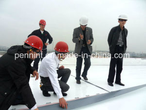 Tpo Single Ply Waterproof Membrane for Flat Roof pictures & photos