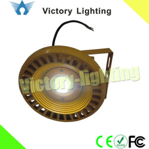 30W Explosion-Proof Lights LED Flood Lights pictures & photos