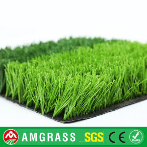 Colored Soccer Field Turf Carpet, Artificial Grass Decoration pictures & photos