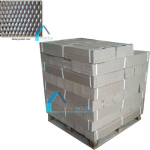 Paper Honeycome Door Core Construction Material/Cleanroom Panel pictures & photos