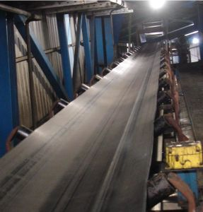 Fire Resistant Conveyor Belt pictures & photos