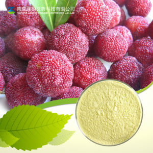 Main Cosmetic Grade Raw Material High Purity 98% Myricetrin pictures & photos
