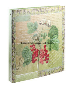 Ring File / Ring Binder/ A4 File Folder pictures & photos