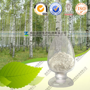 Natural High Quality Birch Bark Extract Betulinic Acid pictures & photos