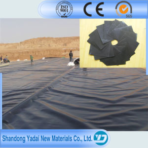 HDPE Geomembrane /LDPE Geomembrane/Pond Liner pictures & photos