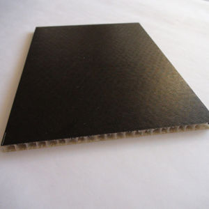 Waterproof Light Weight FRP PP Honeycomb Sandwich Panel pictures & photos