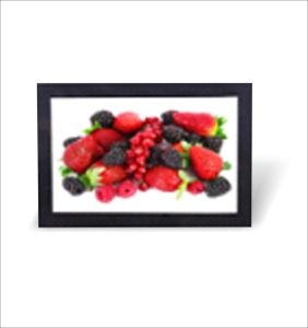 Wall Mount LCD Media Player