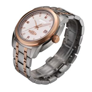 Quality Mechanical Stainless Steel Automatic Watch pictures & photos