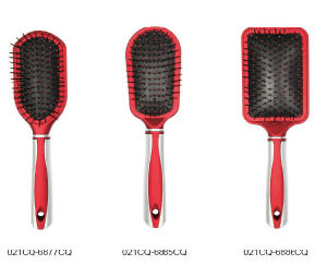 Cushion Hair Brush with Professional (021) pictures & photos