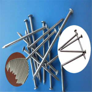 Supply Bright Steel Roofing Nails pictures & photos