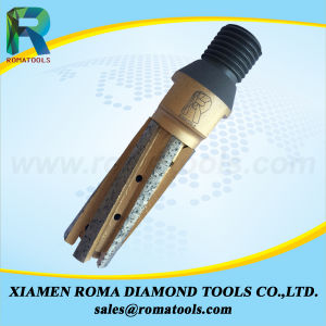 Romatools Diamond Milling Tools of Finger Bits pictures & photos