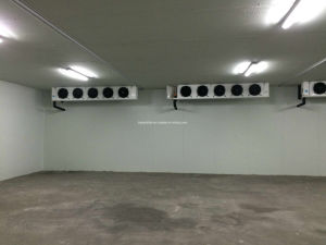 Brand New Cold Rooms for Sale with Great Price pictures & photos