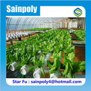 Low Cost High Quality Agricultural Used Hydroponic Greenhouse pictures & photos