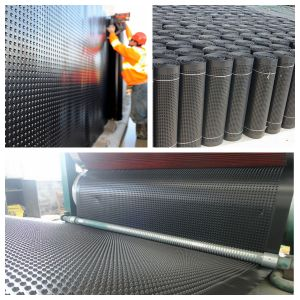 HDPE Dimple Drainage Geomembrane for Tunnel pictures & photos