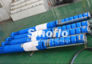 High Pressure Submesible Mine Slurry Pump pictures & photos