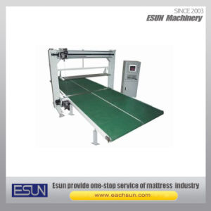 Vertical Single Blade Foam Cutting Machine (CNCHK-3) pictures & photos