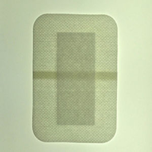 Disposable Wound Care Dressing Pad / Surgical Dressing Pad pictures & photos